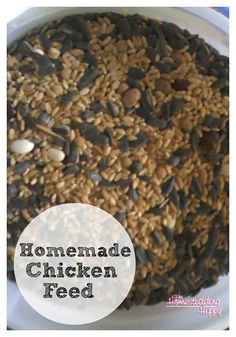 Homemade Chicken Feed Recipe One major benefit of raising your own chickens is having inexpensive organic eggs and meat. The problem is that in many areas