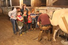 Watching our farrier Peter while he explains a little about hooves as he trims. Educational Programs