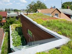 Green roof on urban infill project in downtown Toronto. Designed by Levitt Goodman Architects.
