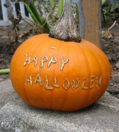 Etch a picture or message into a pumpkin as it grows, and the ripe pumpkin will be scarred with that image. Going to have the kids try this!
