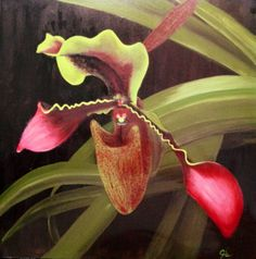 Aja original, night orchid acrylic on oil Orchids, Oil, Fine Art, The Originals, Night, Lilies, Visual Arts, Orchid