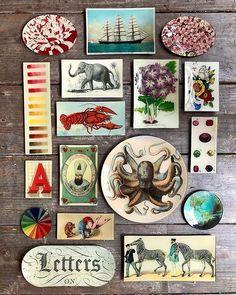 John Derian Company Inc Handmade Crafts, Diy Crafts, Decoupage Glass, Ceramic Flowers, Hanging Art, Bohemian Decor, Decorative Accessories, Gallery Wall, Paper Crafts