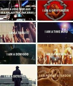 Unite! I am in all of these fandoms, plus Star Trek, avatar (tla), and several others. Going to try supernatural, I'll keep you posted.