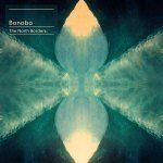Watch, Listen & Download Bonobo's 'Cirrus' for free!     http://salenkomusic.wordpress.com/2013/01/25/bonobo-cirrus/