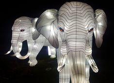 O Festival das Luzes no Jardim das Plantas é um dos eventos mais incríveis do inverno em Paris. E pode-se dizer que é um sucesso absoluto, já que em dois meses acolheu mais de 370.000 visitantes.  #Paris #França #Europa #FestivaldasLuzes #FetedesLumieres #JardimdasPlantas #lanterna #animais Lion Sculpture, Statue, Art, Natural History, Extinct Animals, Paris France, National Museum, Flashlight, Elephants