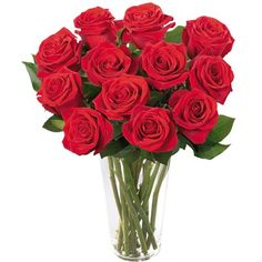 Brilhantes Rosas Vermelhas R$175