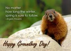 Image result for groundhog winter