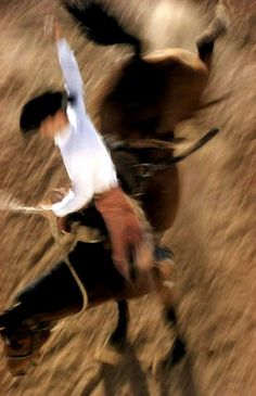 Ernst Haas- Bronco Rider, California, 1957 (ERNST HAAS ESTATE)