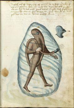 Copenhagen, The Royal Library, Thott 290, p.91. Hans Thalhofer. Alte Armatur und Ringkunst Bavaria, 1459. This page is from Konrad Kyeser's Bellifortis.