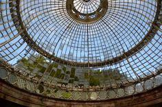 The abandoned greenhouse at Alton Towers, England.  The Alton Towers site opened in 1860 in Staffordshire with flower shows and garden tours until a theme park was built on the site in 1980. Apparently they didn't think the kids would be interested in the greenhouse.