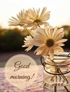 Good Morning Belinda, my dear friend, hope you have a wonderful day! <3
