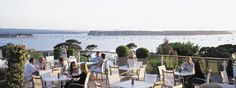 drinks in the sunshine - harbour heights, sandbanks