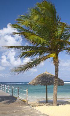 Beach at Holiday Inn Resort Montego Bay, Jamaica