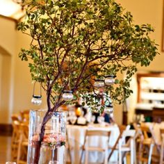 This fresh manzanita is cost effective and would be fun in the silver mercury glass vases if we want to go with a more greenery look. Manzanita Centerpiece, Manzanita Branches, Tree Branches, Centerpieces, Table Decorations, Indoor Trees, Event Company, Garden Theme, Holidays And Events