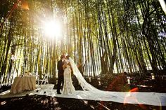 How to Find Your Perfect Wedding Planner