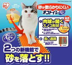【数量限定】散らかりにくいネコトイレ CNT-500 ブルー・イエロー・ライトブラウン P311331F-アイリスプラザ