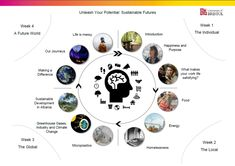 A visual overview of the course topics over the four weeks, in a circular graphic, around an image of a person's head.