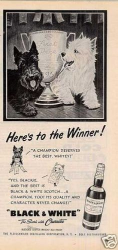 Scottie and Westie. I have a couple of these ads at home... 1920's or 1930's...