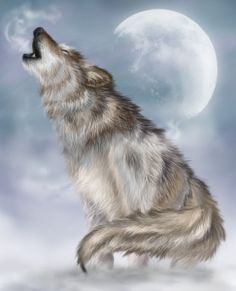 Native American tribes are numerous throughout our lands. Animal symbolism may vary from tribe to tribe. Following are some basic attributes of animals from Weasel to Wolf.