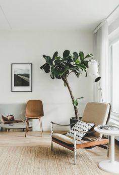 mid-century modern safari chair