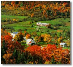 Want to see New England...in the fall :)