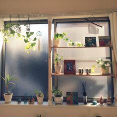 賃貸住宅でも安心♪壁を傷つけず棚を設置できる「ディアウォール」で簡単DIY♪ - Yahoo! BEAUTY
