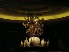 Solstice. Murano Restaurant.