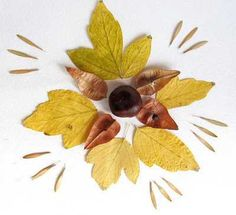 fall leaves collage for kids rooms