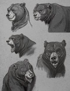 Concept Art & Character Designs by animator & director Aaron Blaise. A collection of digital art, illustrations and sketches. Animal Sketches, Animal Drawings, Art Drawings, Bear Character, Character Drawing, Character Concept, Ours Grizzly, Sketch Manga, Bear Drawing