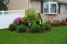 Family Balance Sheet: Front yard landscaping - We did it ourselves! (Explains in detail and gives names of plants!!!)