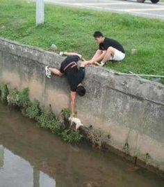Doi băieți conlucrează pentru a salva viața unei pisici.