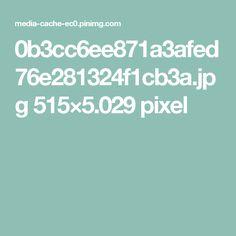 0b3cc6ee871a3afed76e281324f1cb3a.jpg 515×5.029 pixel