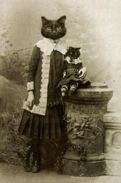 ᙖℓąƈƙ & ᏇᏲᎥ৳ҽ Ƥђσ৳σʂ ~ Lady Violet and little Essie - cats in clothes, vintage photograph.