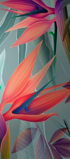 Ideas for wall paper phone green aqua iphone backgrounds Floral Wallpaper Desktop, Orange Wallpaper, Iphone Wallpaper Quotes Love, Apple Wallpaper Iphone, Plant Wallpaper, Trendy Wallpaper, Cellphone Wallpaper, Flower Wallpaper, Mobile Wallpaper