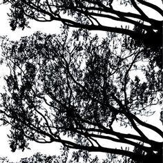 Tuuli kangas, musta Marimekko