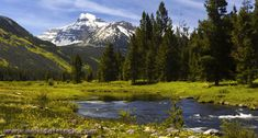 Bear River Utah | Bear River Runs Through Christmas Meadows In The Uinta Mountains Of ...