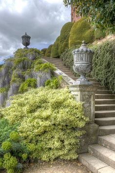 Trip to Wales – Steps in the grounds of Powis Castle Online Plant Nursery, Nature Aesthetic, Dream Garden, Oeuvre D'art, Stairways, Aesthetic Pictures, Beautiful Gardens, Beautiful Places, Scenery