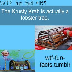 lobster trap - krusty krap  MORE OF WTF-FUN-FACTS are coming HERE  funny and weird facts ONLY