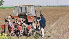Бивша влада била спремна да прихвати ГМО под притиском САД и ЕУ! - http://www.vaseljenska.com/drustvo/bivsa-vlada-bila-spremna-da-prihvati-gmo-pod-pritiskom-sad-i-eu/