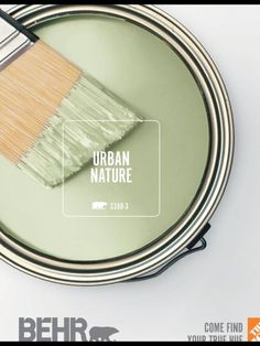 LOVE this color and think it would be great in a nature themed living room. LOVE this color and think it would be great in a nature themed living room. Room Colors, Wall Colors, House Colors, Interior Paint Colors, Paint Colors For Home, Natural Paint Colors, Behr Paint Colors, Deco Design, House Painting
