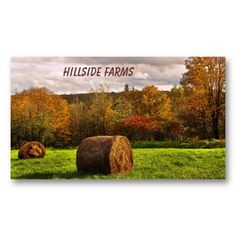 Hay for Sale Business Card ~ This business card advertising hay for sale presents a lovely autumn landscape in seasonal fall foliage colors. A storm has passed and the sun is breaking through the clouds onto a mown field with round bales of hay.