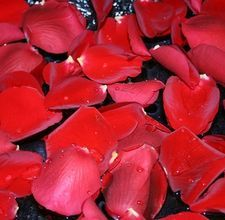 How to freeze dry rose petals for decorating
