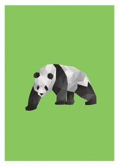 Chinese Giant Panda Illustration