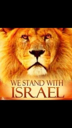 Pray for the Peace of Jerusalem. Stand with Israel. I agree . God's heart yearns for Israel, Cultura Judaica, Psalm 122, Isaiah 41, Lion Of Judah, Prayer Warrior, King Of Kings, Holy Land, God Bless America, Word Of God