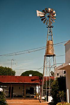 Marichal Winery, Canelones, Uruguay