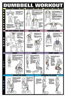 Dumbbell Workout Shoulder, Back, Leg, Calf - dumbbell workouts