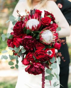Red protea, red peony, red rose wedding bouquet designed by Tricia CFD