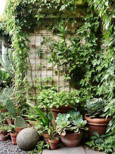 trucos aprovechar jardines pequeños- Trepadoras, reciclaje