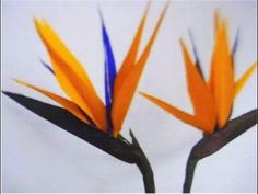Making a Gumpaste Birds of Paradise Flower by Petal Crafts - YouTube