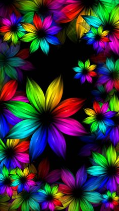 Rainbow flowers wallpaper by arsi26 - 9d48 - Free on ZEDGE™